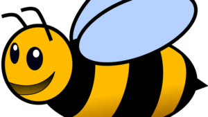 How Many Bees Do You Need To Start A Beehive?