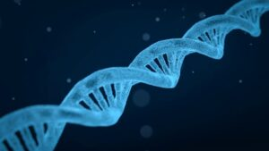 Do all cells have DNA? Do all body cells have the same DNA?