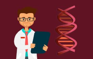 How is DNA used as evidence for evolution?
